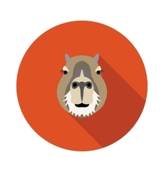 Flat icon a capybara vector