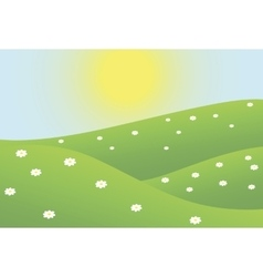 Summer camomiles field vector