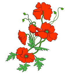 decorative red poppies vector image vector image