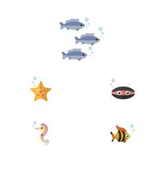 Flat icon sea set of sea star hippocampus vector