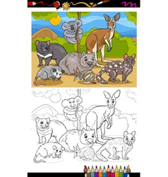 Marsupials animals cartoon coloring book vector