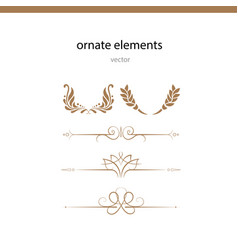 Ornate elements vector