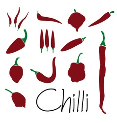 Red chilli peppers types of hot chillies simple vector