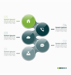 5 option infographic design with ellipses vector