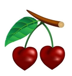 Cherry in the form of heart vector
