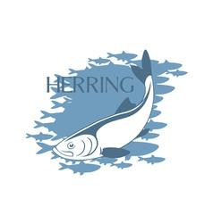 herring fish vector image vector image
