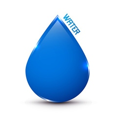 Blue Water Drop Icon Isolated on White vector image vector image