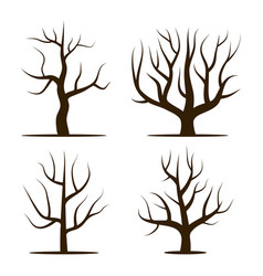four trees without leaves vector image vector image