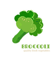 fresh broccoli isolated on white background vector image vector image