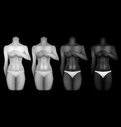 Women bodies templates vector
