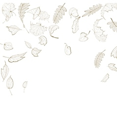 Fall leaf skeletons autumn design template vector