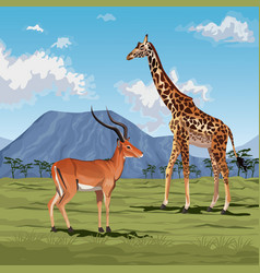 color scene african landscape with gazelle and vector image