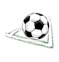 soccer ball field vector image vector image