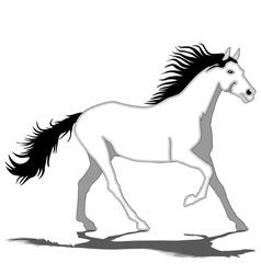 White Horse-Stallion vector image vector image
