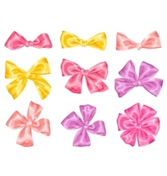 Set of decorative delicate satin gift bows and vector