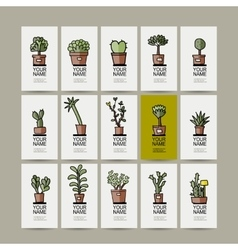 Business cards with cactus in pots sketch for vector image