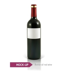 Bottle of red wine vector