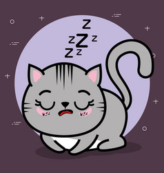 Cute and lovely cat animal vector