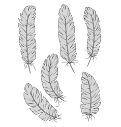 Isolated vintage quill feathers set vector