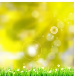 Natural green background eps 10 vector