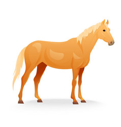 Realistic horse with red coat vector