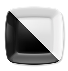 Black and white plate vector