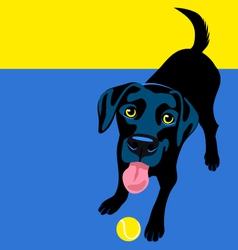 Black labrador retriever vector