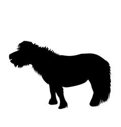 black pony silhouette vector image