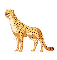 Cartoon smiling cheetah vector