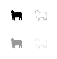 sheep silhouette black and grey set icon vector image