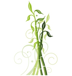 Bamboo decoration vector