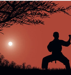 The man is engaged in karate against the sun vector
