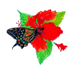 Hibiscus and butterfly vector image vector image