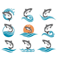 Salmon fish set vector
