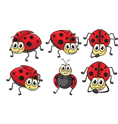 Smiling ladybugs vector image vector image