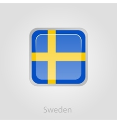 Sweden flag button vector
