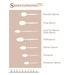 Spoon collection for different food vector