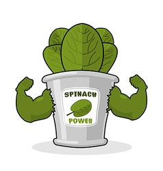Spinach strong and powerful muscular arms of banks vector
