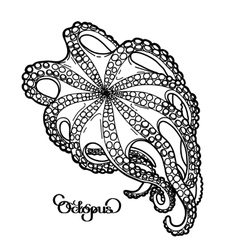 Graphic octopus in bottom view vector