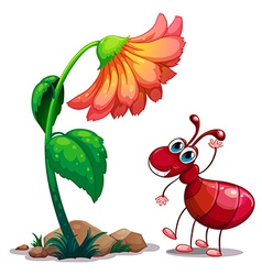A giant flower beside the red ant vector image vector image
