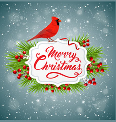 Christmas banner with red cardinal bird vector