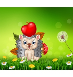 Cute little hedgehog in the beautiful grass vector image