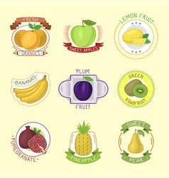 fruits badges vector image vector image