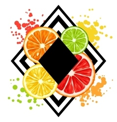 Print with citrus fruits slices mix of lemon lime vector