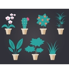 Flat style houseplants vector