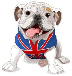 English Bulldog vector image vector image