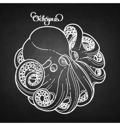 Graphic octopus in a circular shape vector