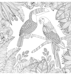 hand drawn toucan bird and ara parrot vector image