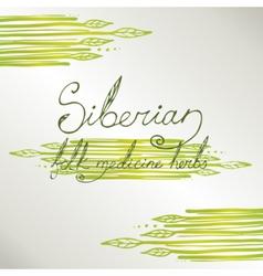 Siberian folk medecine herbs set vector