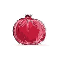 Sketch of pomegranate for your design vector